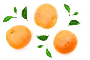 Apricot fruits isolated on white