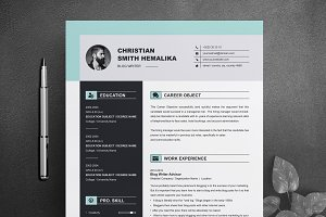 Professional Resume Template | CV