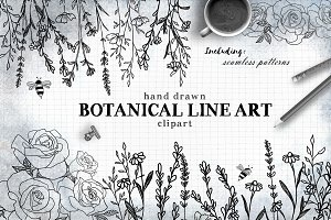 Botanical Line Art