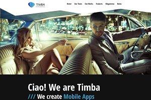 Timba - Creative Portfolio WP Theme