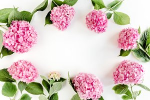 Frame of pink hydrangea