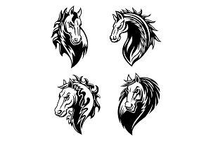 Horse or mustang animal mascot