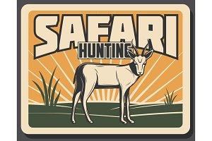 Safari hunting banner with antelope