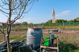 Venice  Burano 015.jpg