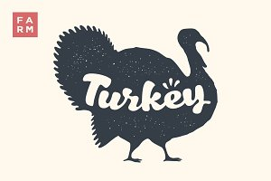 Turkey. Lettering, typography