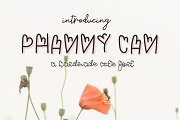 Phanny Can - A cute Font