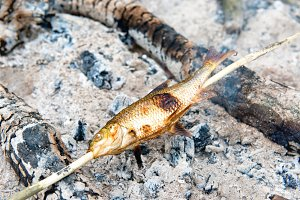 Grilled fish on the fire
