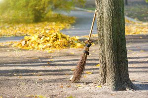 Cleaning in the autumn park