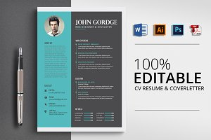 Professional Design Word Resume