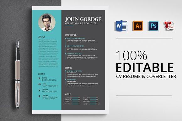 Professional Design Word Resume