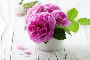 Pink roses on the wooden table