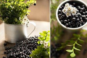 Juicy blueberry berries macro