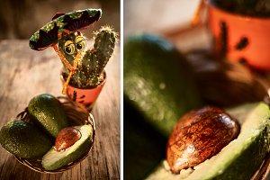 Cactus in sombrero and avocado, funn