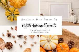 White Autumn Elements Styled Mock Up