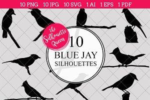 Blue Jay Silhouette Clipart Clip Art