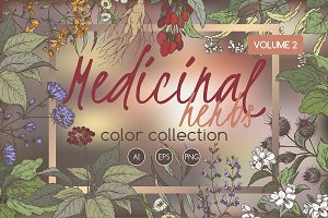 Medicinal herbs color set Vol.2