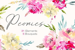 Watercolor peonies flowers, bouquets