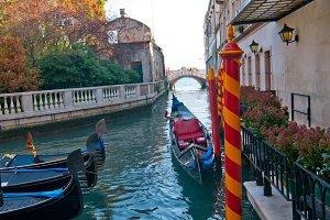 Venice 173.jpg