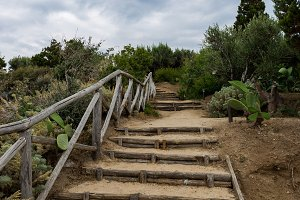 Wooden stairs way