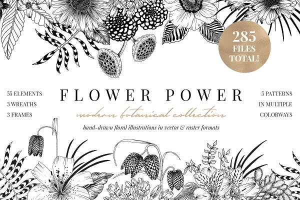 FLOWER POWER botanical illustration…