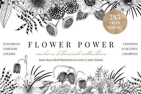 FLOWER POWER botanical illustrations