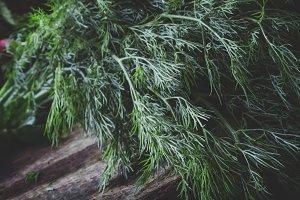 Fresh dill on an old birch board. Vi