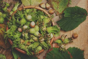 Fresh hazelnuts in shell with leaves
