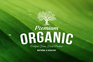 Organic natural food tree logo