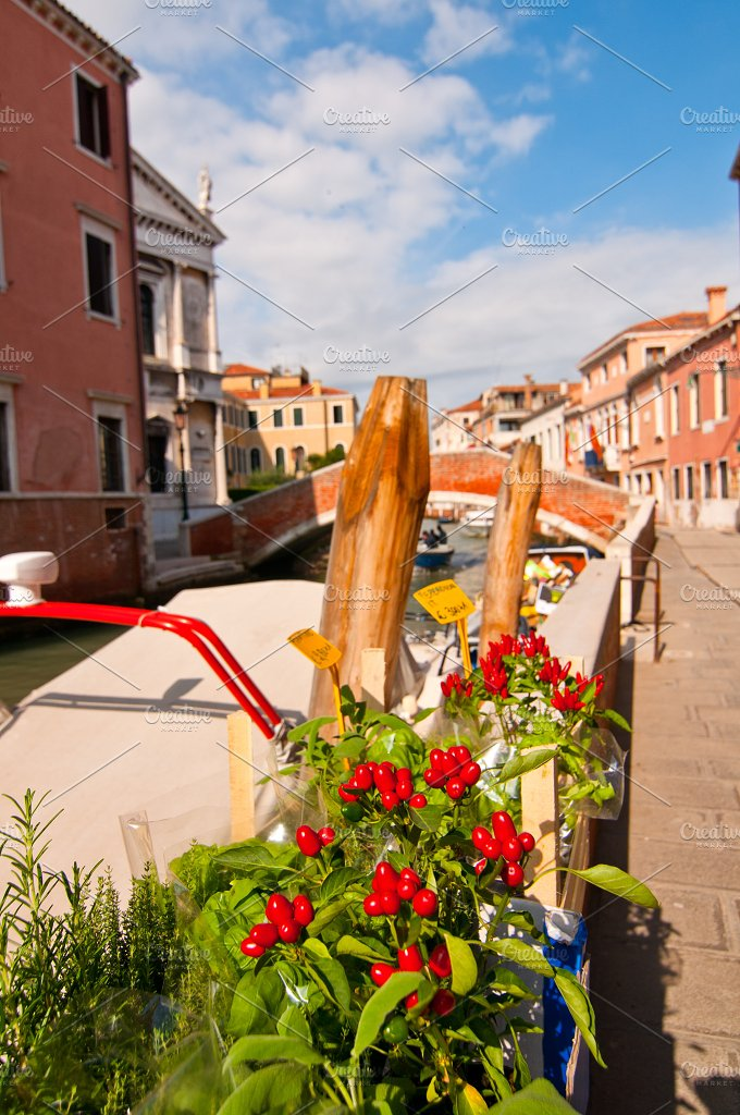 Venice 543.jpg - Holidays