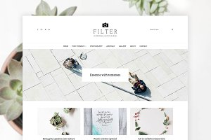 Filter - Art & Photography WP Theme