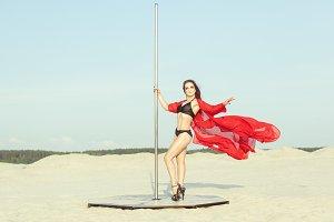 Performance on the pole, sex dance.