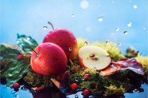 Autumn apples under rain. Fall