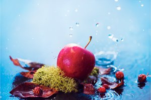 Autumn apples under the rain. Fall