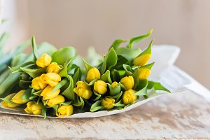 Yellow tulips flowers bouquet on a w