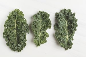 Leaves of kale on a white background