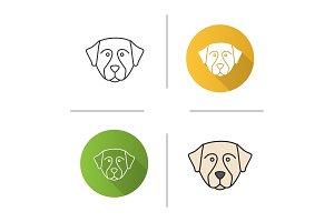 Bernese Mountain dog icon
