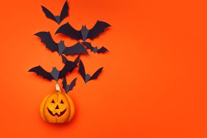 Halloween concept, swarm of bats