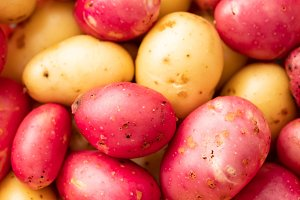Fresh organic young potatoes sold on
