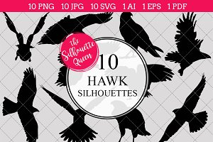 Hawk bird Silhouette Clipart Vector