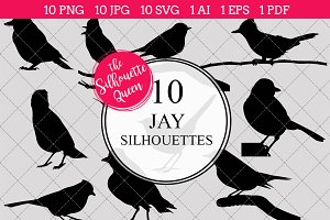 Jay Silhouette Clipart Vector