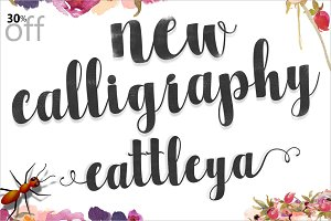 Cattleya Script