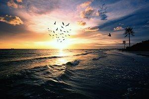 Sunset Beach dramatic evening