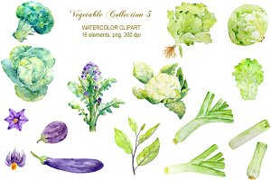 Watercolor Vegetable Collection 5