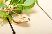 Arab middle east mint tea and pine nuts 001.jpg