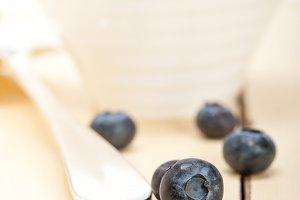 blueberry 045.jpg