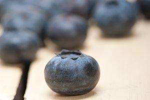 blueberry 010.jpg