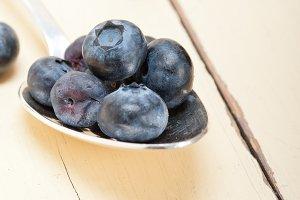 blueberry 021.jpg
