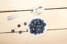 blueberry 029.jpg