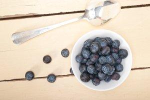 blueberry 028.jpg