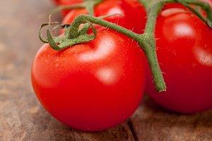 cherry tomatoes 045.jpg